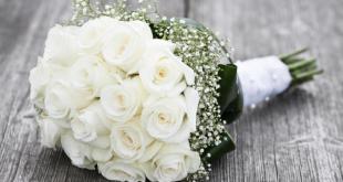 صوره صور ورد ابيض , اجمل زهور بيضاء للرسائل