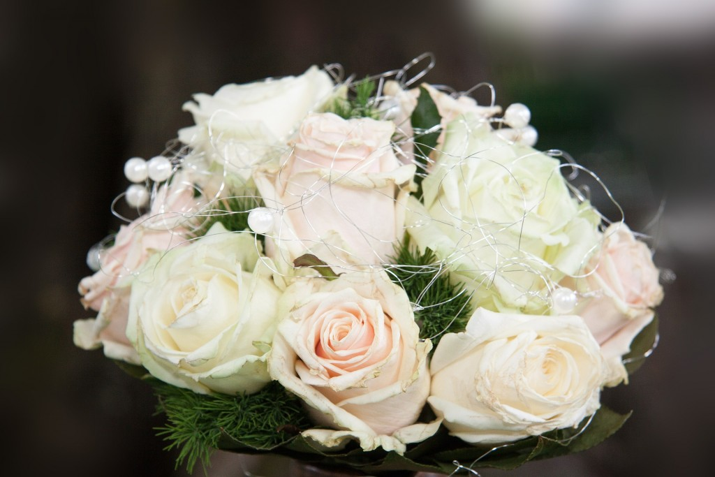 بالصور صور ورد ابيض , اجمل زهور بيضاء للرسائل 4503 6