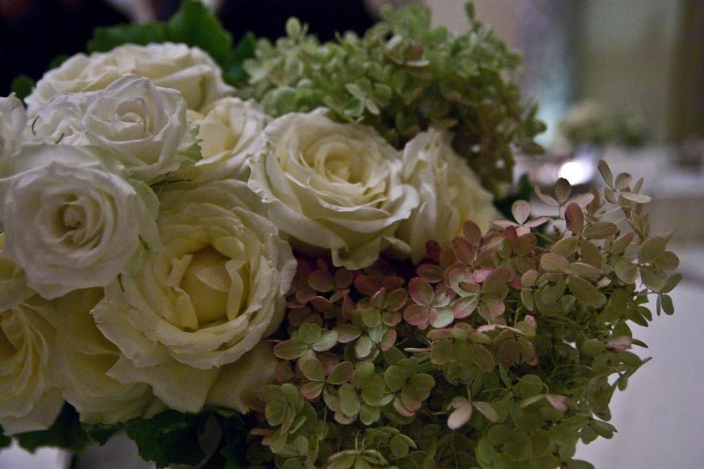 بالصور صور ورد ابيض , اجمل زهور بيضاء للرسائل 4503 7