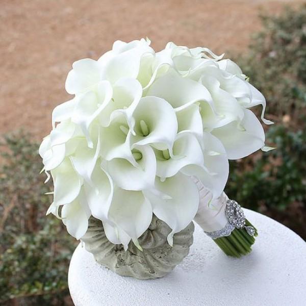 بالصور صور ورد ابيض , اجمل زهور بيضاء للرسائل 4503