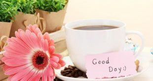 صور صباح الخير كلام حلو , عبارات حب و سعادة