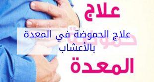 صورة حموضة المعدة وعلاجها , كيفيه الوقايه من حموضه المعده وعلاجها