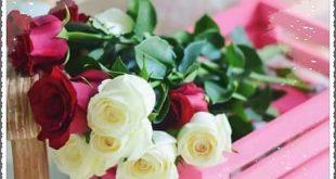 بالصور صور الجمعة مباركه , جمل و عبارات عن يوم الجمعة 13658 1.jpeg 310x165