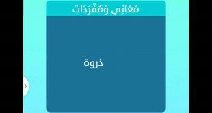 بالصور ما معنى الذروة , مرادف الذروة في المعجم العربي unnamed file 112 310x165