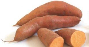 صور البطاطا الحلوة والرجيم , فائدة البطاطا الحلوة في انقاص الوزن