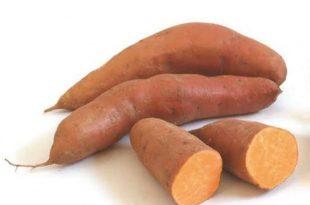 بالصور البطاطا الحلوة والرجيم , فائدة البطاطا الحلوة في انقاص الوزن