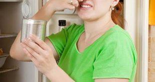 بالصور القضاء على رائحة الثلاجه , طرق للحفاظ علي رائحة الثلاجة
