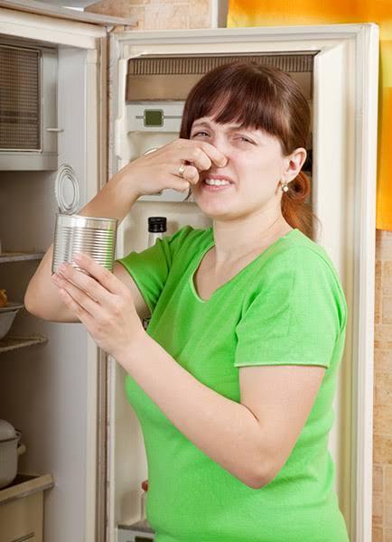 صور القضاء على رائحة الثلاجه , طرق للحفاظ علي رائحة الثلاجة
