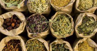 صورة علاج فقر الدم بالاعشاب المغربية , اعشاب مفيدة لعلاج فقر الدم