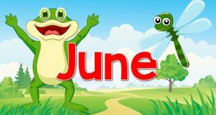 صور شهر يونيو كم يوم , ترتيب شهر يونيو في التقويم الميلادي و عدد ايامه