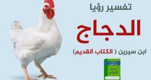 بالصور تفسير رؤية الدجاج في المنام , افضل تفسير لرؤيه الدجاج فى المنام 13275 2 310x165