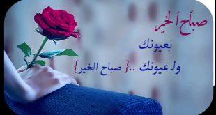 صورة كلمات اغنية حبيبي صباح الخير , احلى واجمل كلمات اغنيه حبيبى لماجد المهندس