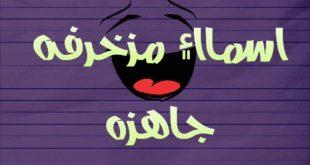 صورة اسماء للفيس بوك مزخرفة للبنات , اسماء بنات علي الفيس بوك شقية