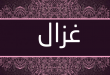 صور صور اسم غزال , شاهد اجمل صور لاسم غزال