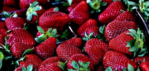 صور فوائد الفراولة للتخسيس , الفراولة لتفتيت الدهون