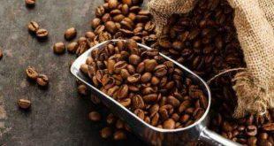 فوائد قهوة القشر